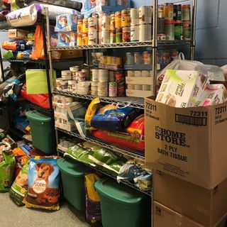 MSPCA Marks Gas Explosions Anniversary With Drive For Pet Food, Toys