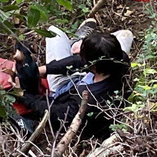 Bassotto e il suo padrone bloccati in fondo alla scarpata. I pompieri salvano entrambi
