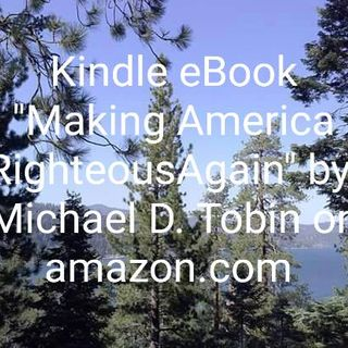 2020 POTUS Candidate Snatches My Book Title? Jesus on Weeds, Seeds and Salvation
