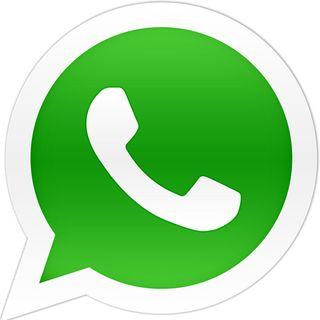 Whatsapp presento su aplicacion en la pc y novedades de google traductor