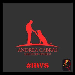 INTERVISTA ANDREA CABRAS - EDUCATORE CINOFILO