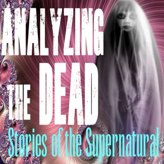 Analyzing the Dead | Interview with Robin Strom-Mackey | Podcast