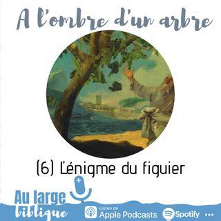 #177 A l'ombre d'un arbre (6) L'énigme du figuier