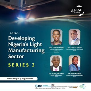 Developing Nigeria's Light Manufacturing Sector. (Series2)