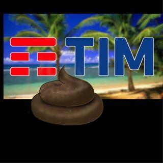 Tim M er**