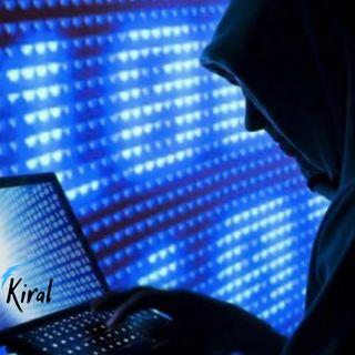 Pirateria Informatica: cosa dice la legge?