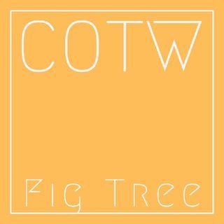 Ep.13 : Fig Tree