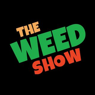 59: Halloweed California Weed Raids, NORML Sues Florida over Cannabis, Marijuana and Chtulhu bring us the weather