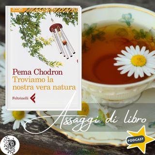 Troviamo la nostra vera natura -  Pema Chodron ★ Assaggi di Libro ★