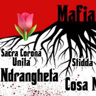 Ep. 55 - la Mafia 🇮🇹 Luisa's Podcast