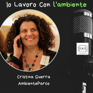 #23 Storie di professioniste coraggiose con Cristina Guerra