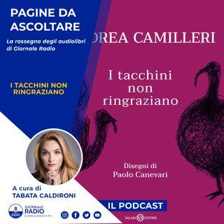 """Pagine da ascoltare. """"I tacchini non ringraziano"""" di Andrea Camilleri"""