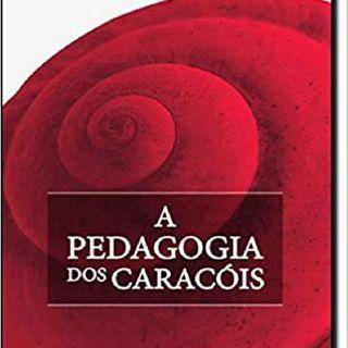 A Pedagogia dos Caracóis. A Cebola