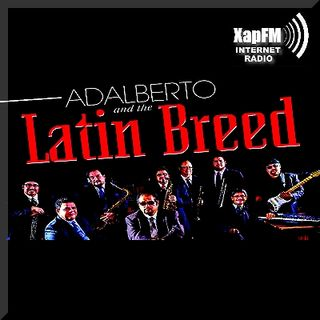 Latin Breed - Usted