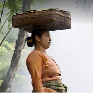 Viaggio in 500 - Bali e Spyra