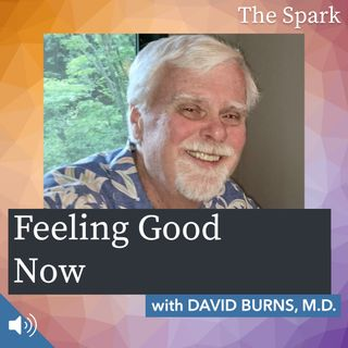 The Spark 014: Feeling Good Now with Dr. David Burns