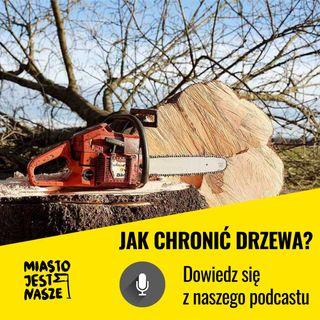 Jak chronić drzewa w mieście? | Łukasz Porębski