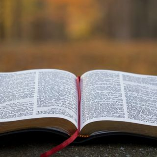 Why I believe in the Bible?