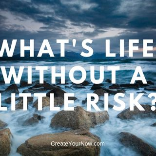 1485 What's Life Without A Little Risk?