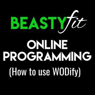 Beastyfit Online Programming