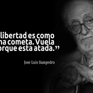 Hoy reviviendo a José Luis Sampedro