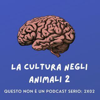 La cultura negli animali 2: 2x02 🧠