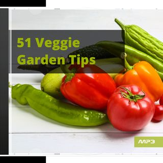 Listen to these 51 tips for the vegetable garden