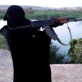 Hennes resa till IS