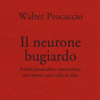 """Walter Procaccio """"Il neurone bugiardo"""""""