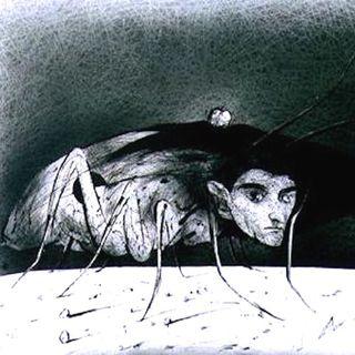 Kafka: La metamorfosi