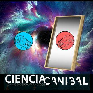 1-10 Posible planeta 9 y la Antimateria