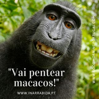 15 Weird Portuguese Sayings (from www.inarrabida.pt)
