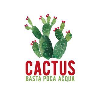 Cactus #6- Storie in nero - 26/11/2020