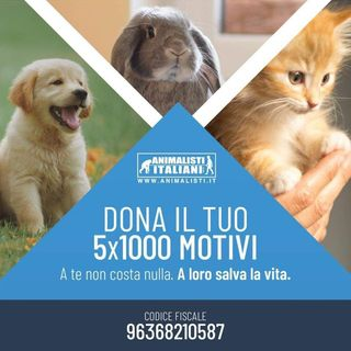"Riccardo Manca, vicepresidente Animalisti Italiani ""fake news sulla pelle degli animali"""