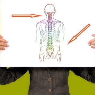 Regeneran huesos de columna
