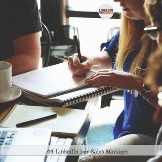 44 - LinkedIn per Sales Manager