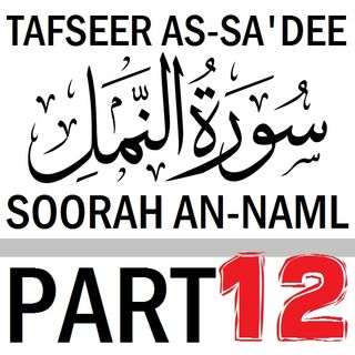 Soorah an-Naml Part 12: Verses 73-81