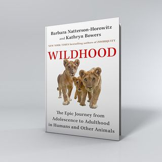 Barbara Natterson Horowitz and Kathryn Bowers Release Wildhood