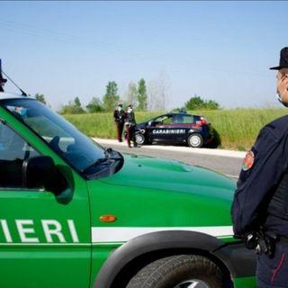 Pasqua, i controlli dei carabinieri portano a un arresto e due denunce