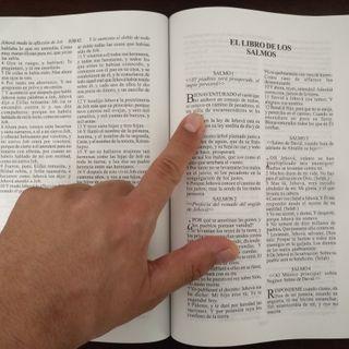 Conociendo la Biblia