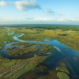 12 Hike Travels to Everglades National Park