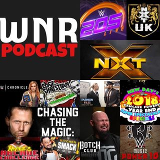 WNR199 WWE NETWORK REVIEW JAN