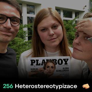 SNACK 256 Heterostereotypizace