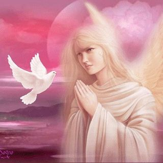 Meditazione LAAV: Siamo Angeli Convegno Cuneo 2012