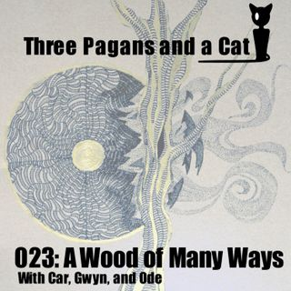 Episode 023: A Wood of Many Ways
