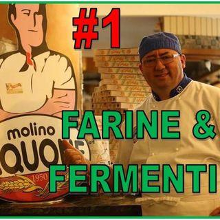 #25 - FARINE e FERMENTI - Molino IAQUONE