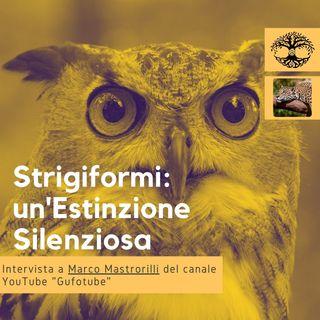 Strigiformi: un'Estinzione Silenziosa (intervista) - Impronta Animale