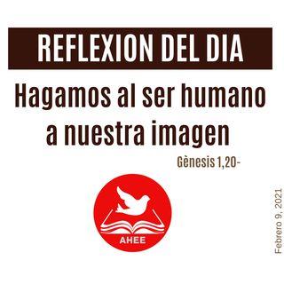 Hagamos al ser humano a nuestra imagen - Génesis 1, 20