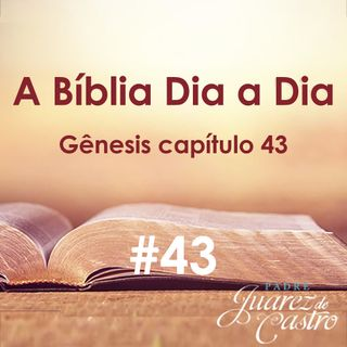 Curso Bíblico 43 - Gênesis Capítulo 43 - Viagem dos filhos de Jacó ao Egito -Padre Juarez de Castro