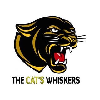 The Cat's Whiskers Podcast - Between Brock & A Hard Place